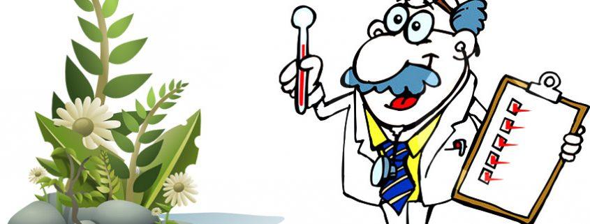 بيماريهاي مهم گياهان آپارتماني PlantDesease 1 845x321