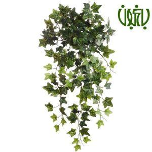 گیاهان مناسب نگهداری در اتاق خواب 19 HangingEnglishIvyPlant 300x300