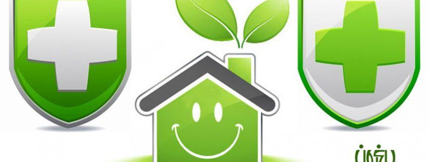 انرژی مثبت گل ها و گیاهان  گیاهانی که انرژی مثبت را به خانه تان می آورند Positive Plants banner 845x321