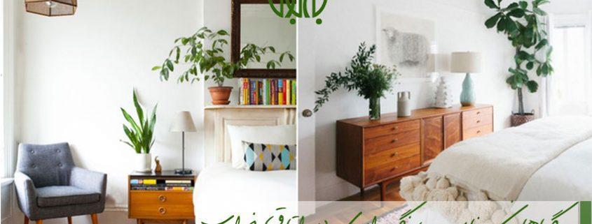 گیاهان مناسب اتاق خواب  گیاهان مناسب نگهداری در اتاق خواب indoor plant for bedroom 845x321