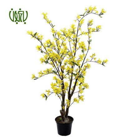 یاس زرد – Forysthia  یاس زرد-Forysthia plant forsythia 2 450x450