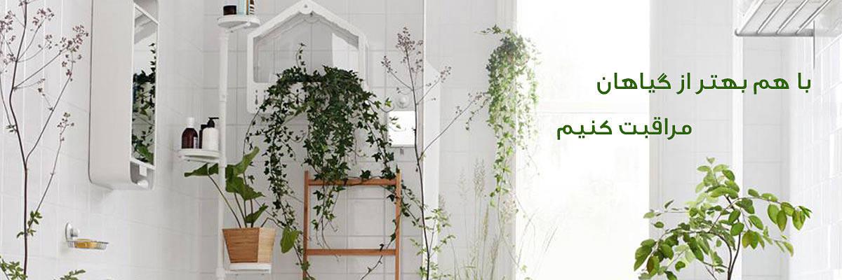 باغبون  خانه Care plants banner