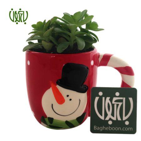 ماگ زمستامه  ماگ زمستانه 1 gift mug succulent plant sp4 1 450x450  خانه gift mug succulent plant sp4 1 450x450