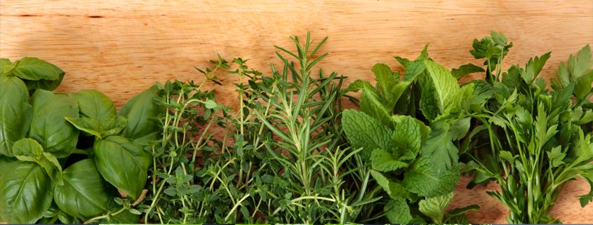 آموزش کاشت سبزی خوردن در گلدان                     2  وبلاگ  D8 B3 D8 A8 D8 B2 DB 8C  D8 AE D9 88 D8 B1 D8 AF D9 86 2