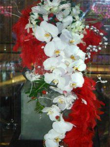 معرفی گرانترین گل ها 4 225x300
