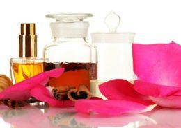 آموزش تعویض گلدان سانسوریا پا کوتاه Enyevent perfume 260x185 گل و گیاه خانگی گل و گیاه خانگی Enyevent perfume 260x185