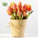 گل لاله  نرگس درختی-Sweet mock orange Tulip plant 4 80x80