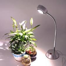 تاثیر نور لامپ بر رشد گیاهان cghjfgjfghgyjgyj