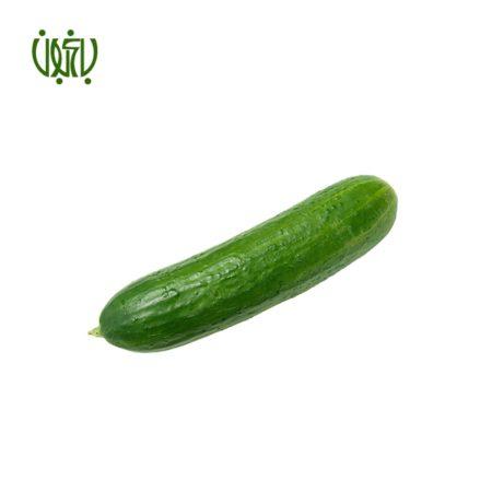 بذر  بذر خیار Cucumber sperm 03 450x450
