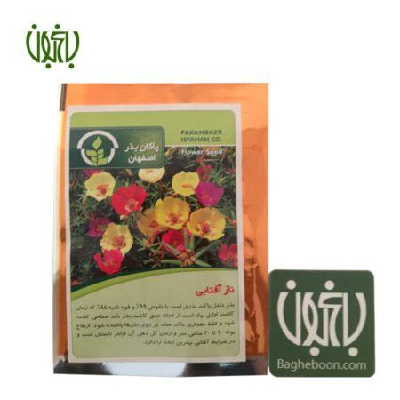 بذر  بذر ناز آفتابی Cute sunny flower sperm 01 450x450