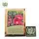 بذر  بذر ناز آفتابی khatmi flower sperm 01 80x80