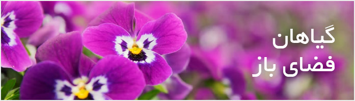 گیاهان فضای باز گیاهان فضای باز گیاهان فضای باز outdoorplant banner
