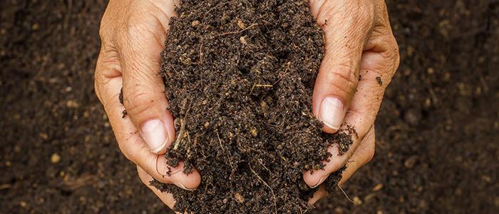 کود کامل یا کود NPK چیست ؟ pthomeandgarden Compost Vs Fertilizer Gardening 700x300 700x300