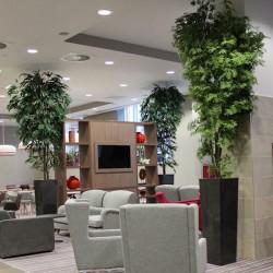 فنگ شویی گیاهان و تاثیر استفاده گیاه در محیط منزل و محل کار artificialofficeplants