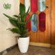 گلدان هدیه  گلدان هدیه برگ عبایی طرح1 aspidistra elatior plant gift 2 0 80x80