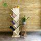 گلدان هدیه  گلدان هدیه آگلونما سفید طرح 2 Sansevieria moon plant gift 3 0 80x80