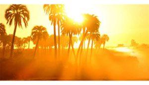 نور شدید آفتاب