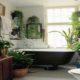 گیاهان مناسب سرویس بهداشتی